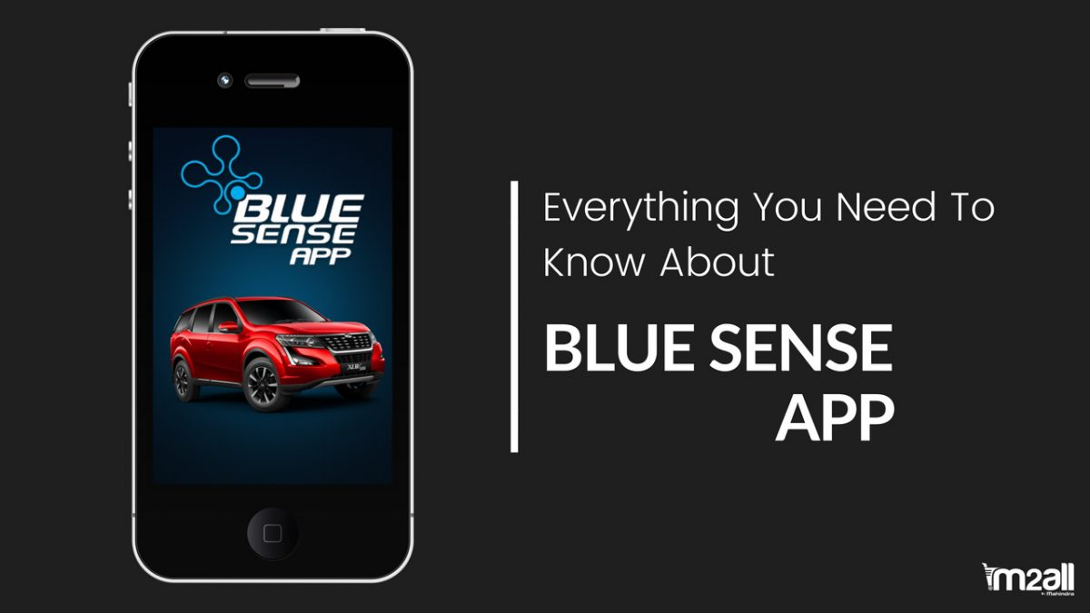 Everything You Need To Know About The Blue Sense App
